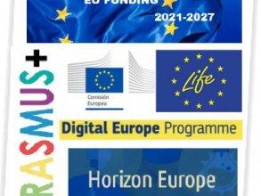 Elaboración y Gestión de Proyectos Europeos. CURSO ON LINE
