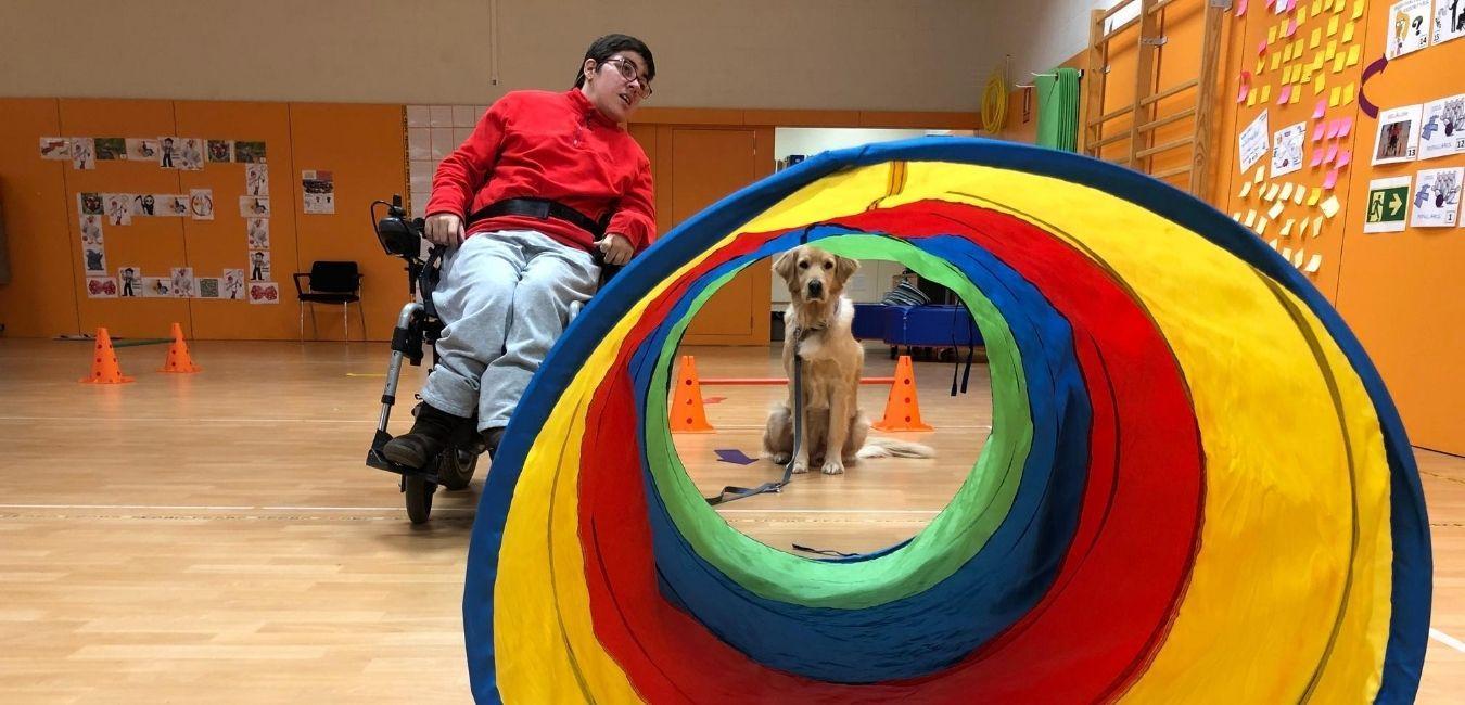 Fisioterapia asistida con perros