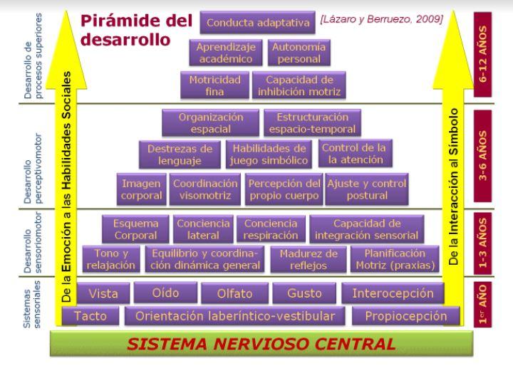 La Pirámide del desarrollo humano