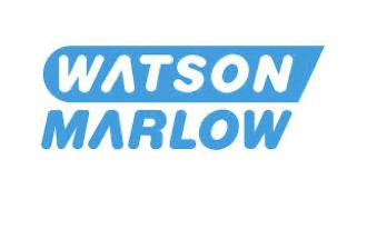 WATSON MARLOW.  PROGRAMA EN HERRAMIENTAS Y HABILIDADES DIGITALES. Diagnóstico inicial empresa/personal+Teoría vía webinar+Casos prácticos +Implantar acción comercial+Dudas vía webinar+Test de evaluación+Foro/chat apoyo.